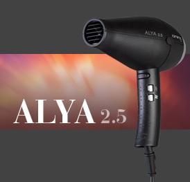 ALYA 2.5